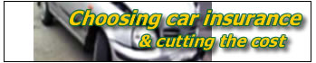 choosing car insurance - cutting the cost